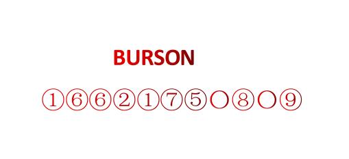 美國布爾森國際有限公司
