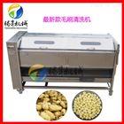 TS-M800大型山药清洗去皮机 定制土豆去皮清洗机
