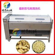 大型山药清洗去皮机 定制土豆去皮清洗机