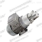 高压小流量磁力泵-搅拌装置-中伟