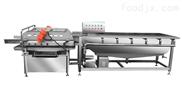 净菜加工机械洗菜机大型中央厨房设备