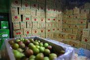 水果市场水果蔬菜冷库建造安装