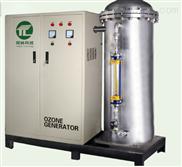 3S-D大型臭氧发生器