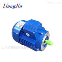 中研MS8012紫光三相異步電機