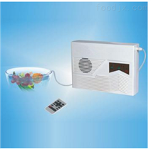 小型臭氧发生器