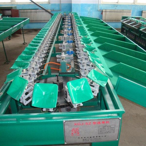 石榴产后处理设备选果机哪里有卖云南四川