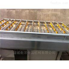 广东牡蛎清洗机厂家