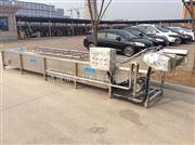 ATF4000豆芽清洗机