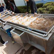 厂家定做优质净菜生产设备 新鲜果蔬清洗机