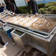 山野菜连续式清洗机