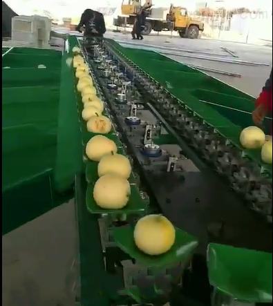 西安甜瓜通用分选设备甜瓜选果机
