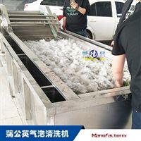 3000翻浪式白菜气泡清洗机