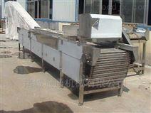 滚杠式大枣分级机不锈钢分级设备