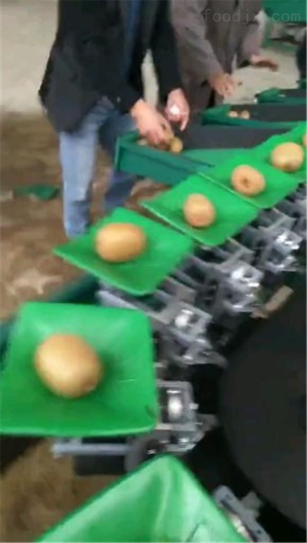 宜昌猕猴桃选果机 全自动机械重量分选