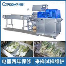 全自动小型蔬菜包装机