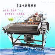 杏鲍菇清洗机  全自动蔬菜清洗加工设备
