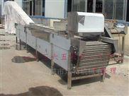 DRT红枣分级的机器设备