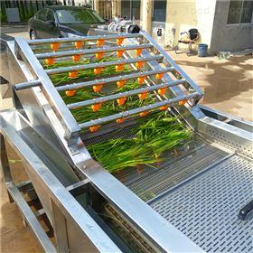 茶树菇自动提升清洗机鲜鱼清洗设备