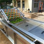 自動提升油麥菜清洗機變頻調速葉菜類清洗機