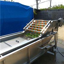 全自動QX5-800型菌類清洗機 羊肚菌清洗設備