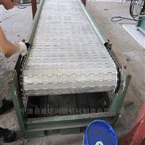 喷涂线金属链板输送机