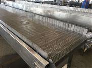 炒货流水线用不锈钢链板输送设备