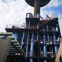 蒸發器結構分類_廢水處理_廠家直銷