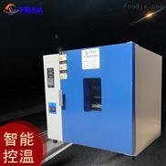 汽车配件通电测试高温老化箱 电热干燥箱
