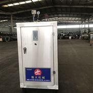电加热燃油燃气新型环保蒸汽发生器