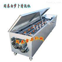 山东白萝卜清洗机 自动洗萝卜机器