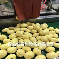TD-1刀削式 土豆去皮机