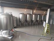德国原浆啤酒设备多少钱,啤酒设备厂家直供