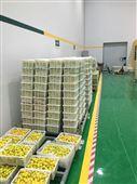 3000立方米水果保鲜库需要投资多少钱?