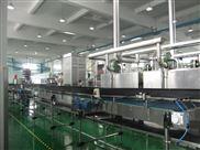 上海立奋直线皮带输送机