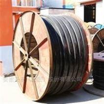 天康鋼包行車電纜