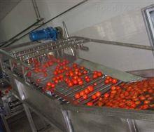 桔汁实验型饮料生产线