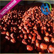 专业定制大枣清洗风干线  适用各种果蔬清洗