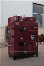 DS-100全自动小型生物质蒸汽发生器安全