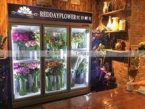 梅州鮮花柜廠家直銷風冷保鮮柜價格