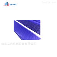 厂家直销专业定制优质塑料网带链条