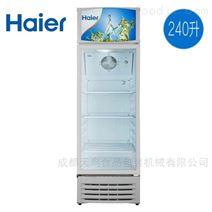 Haier/海尔SC-300立式冰柜商用展示柜
