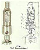 AY42H高壓不銹鋼安全閥,永一閥門