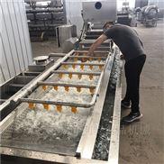 厂家热销草莓专用清洗机 蓝莓气泡清洗设备