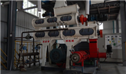 干法饲料膨化机HDEP系列
