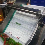 果蔬多功能高压喷淋气泡清洗机