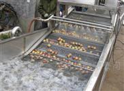 現貨供應白菜氣泡清洗機連續翻浪式洗菜機
