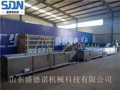 SDN-800专业净菜加工设备