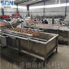 SDN-600专业枸杞清洗机