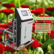 智能全自动灌溉设备温室花卉滴灌施肥机