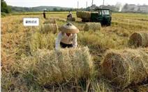 TF70100A型稻草捡拾打捆机器